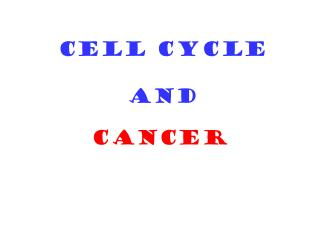 CELL CYCLE  AND