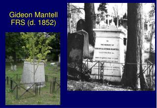 Gideon Mantell FRS (d. 1852)