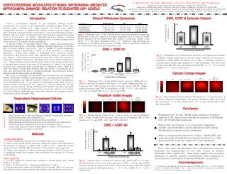 CORTICOSTERONE MODULATES ETHANOL WITHDRAWAL-MEDIATED HIPPOCAMPAL DAMAGE: RELATION TO ELEVATED CA 2+  LEVELS