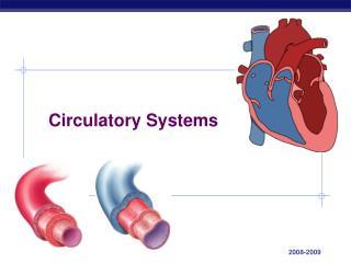 Circulatory Systems
