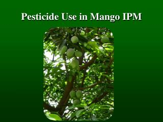 Pesticide Use in Mango IPM