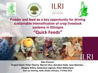 "Fodder and feed as a key opportunity for driving sustainable intensification of crop livestock systems in Ethiopia ""Qui"