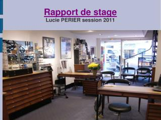 Rapport de stage Lucie PERIER session 2011