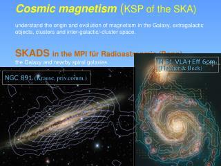 Cosmic magnetism ( KSP of the SKA)