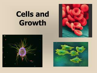 Cells and Growth