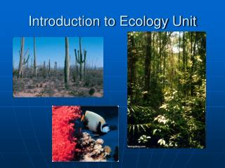 Introduction to Ecology Unit