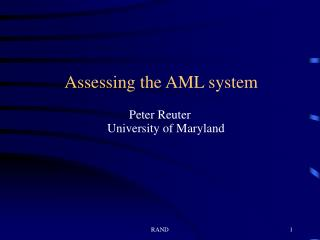 Assessing the AML system