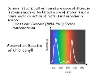 Absorption Spectra  of Chlorophyll