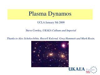 Plasma Dynamos