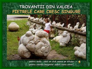 TROVANTII DIN VALCEA PIETRELE CARE CRESC SINGURE