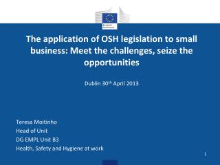 The application of OSH legislation to small business: Meet the challenges, seize the opportunities  Dublin 30 th  April