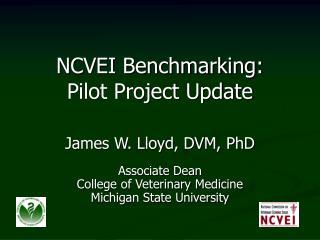 NCVEI Benchmarking: Pilot Project Update