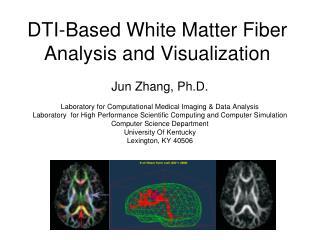 DTI-Based White Matter Fiber Analysis and Visualization