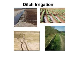Ditch Irrigation