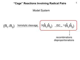 (R 1 -R 2 )    homolytic cleavage  3( R 1 R 2 )     ISC 1( R 1 R 2 )