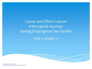 Cause and Effect Lesson Interrupted Journey:   Saving Endangered Sea Turtles