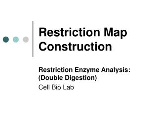 Restriction Map Construction