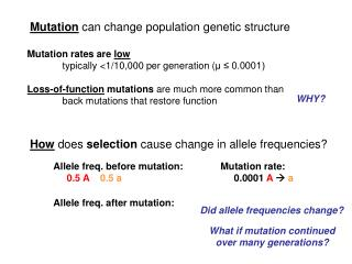 Mutation can change population genetic structure