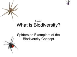 Chapter 1 What is Biodiversity?