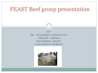 FEAST Beef group presentation