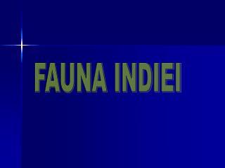 FAUNA INDIEI