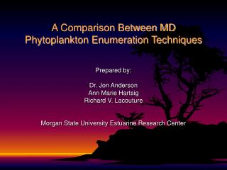 A Comparison Between MD Phytoplankton Enumeration Techniques
