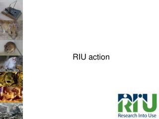 RIU action