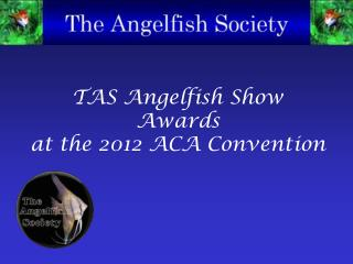 TAS Angelfish Show Awards at the 2012 ACA Convention