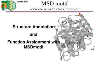 MSD motif www.ebi.ac.uk/msd-srv/msdmotif