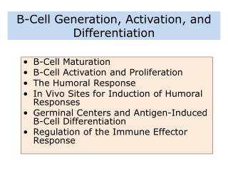 B-Cell Generation, Activation, and Differentiation