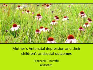 Mother's Antenatal depression and their children's antisocial outcomes