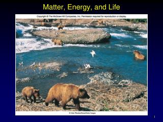 Matter, Energy, and Life