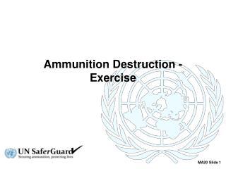 Ammunition Destruction - Exercise