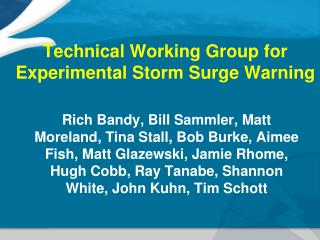 Technical Working Group for Experimental Storm Surge Warning