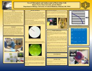 Use of Chloroplasts and Anthocyanin in Photovoltaic Cells Hunter Porter, Brian  Tetreault , and Jim  Bidlack