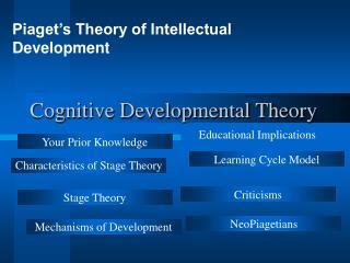 Cognitive Developmental Theory
