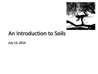 An Introduction to Soils July 13, 2014
