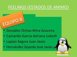 FEELINGS (ESTADOS DE ANIMO)