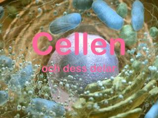 Cellen och dess delar