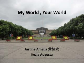 My World , Your World
