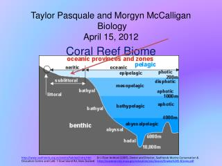 Taylor Pasquale and  Morgyn McCalligan  Biology April 15, 2012