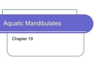 Aquatic Mandibulates