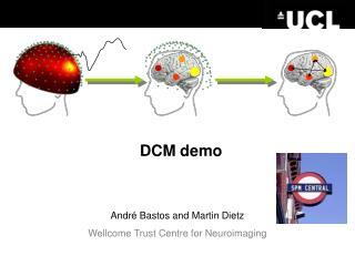 DCM demo
