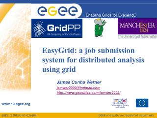 EasyGrid: a job submission system for distributed analysis using grid