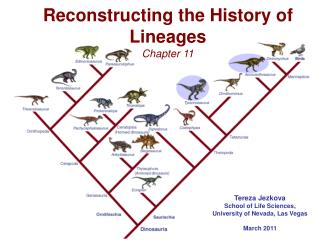 Reconstructing the History of Lineages