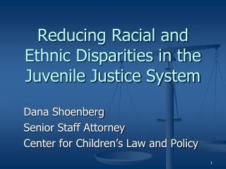 Reducing Racial and Ethnic Disparities in the Juvenile Justice System