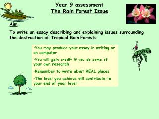 Year 9 assessment The Rain Forest Issue