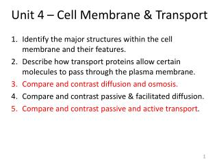 Unit 4 – Cell Membrane & Transport