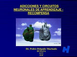 ADICCIONES Y CIRCUITOS NEURONALES DE APRENDIZAJE - RECOMPENSA