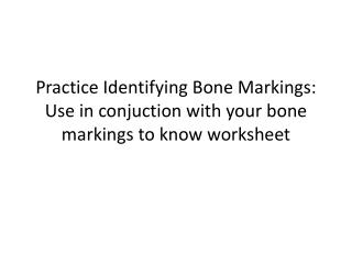 Practice Identifying Bone Markings:  Use in  conjuction  with your bone markings to  know worksheet